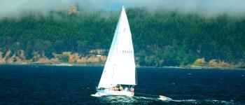 Udlev drømmen på havet med en brugt motorbåd