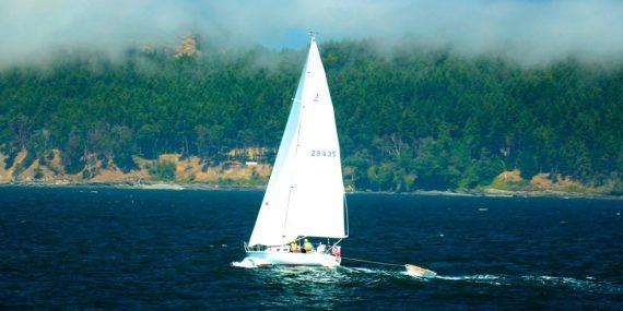 Screenshot 6 570x285 - Udlev drømmen på havet med en brugt motorbåd